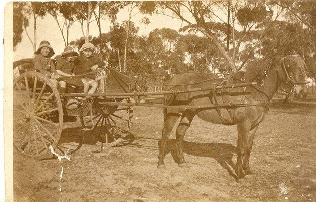 Historical Photos of Quairading - Cecil, Beryl and Alan off to school in