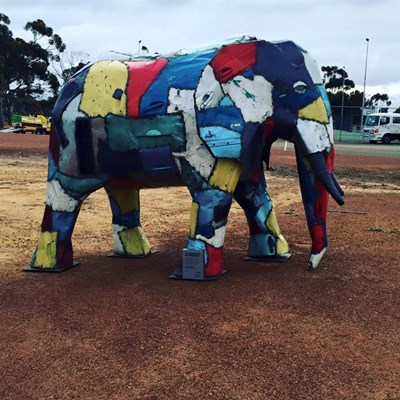 Quairading Show, 2016 - The Elephant in the Wheatbelt
